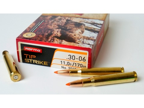 30-06 Norma TipStrike 170gr