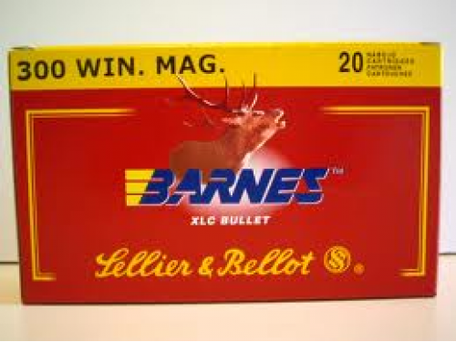 300 WM Sellier and Bellot XLC/180gr