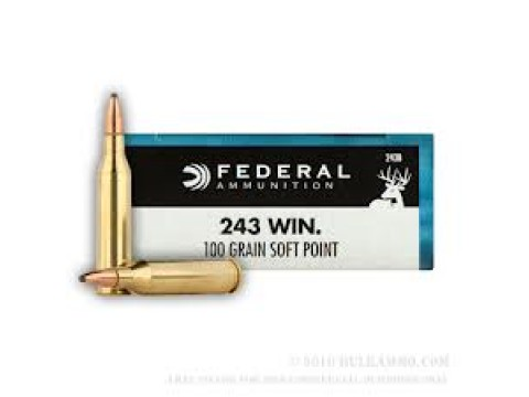 243 WIN Federal SP/100Gr