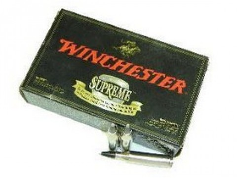 243 WIN Winchester Supreme BST/95Gr
