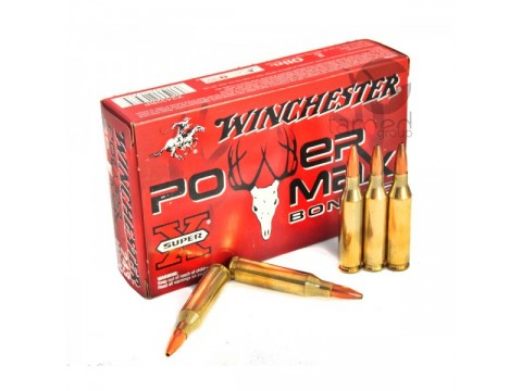 243	WIN Winchester Power Max/100gr