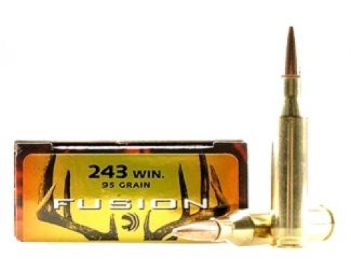 243 WIN Federal Fusion/95gr