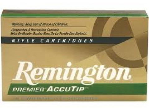 243 WIN Remington AccuTip/95Gr