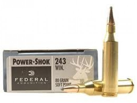 243 WIN Federal SP/80Gr