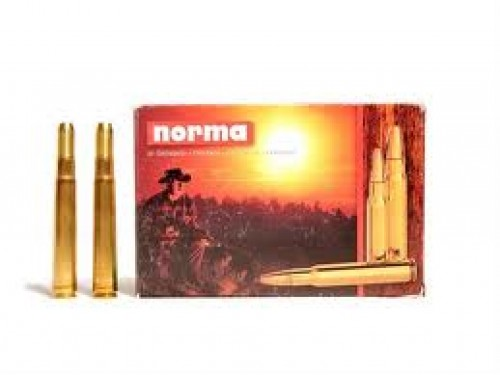 378 Wtby Mag Norma SP/300Gr