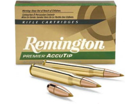 30-06 Remington Accutip/165Gr