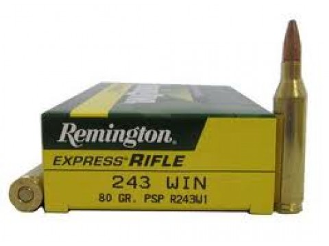 243 WIN Remington  PSP/80Gr