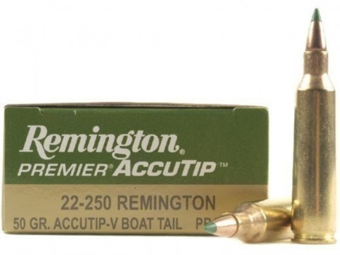 22-250 Rem Remington Accutip/50gr