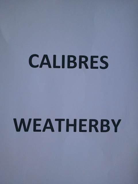 Calibres Weatherby